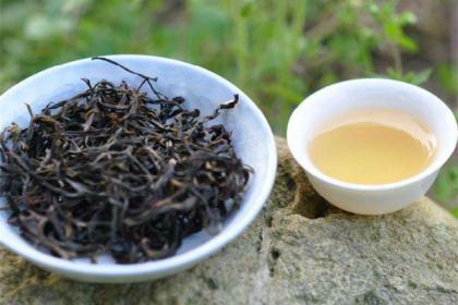 凤凰单丛茶的香气从那里来